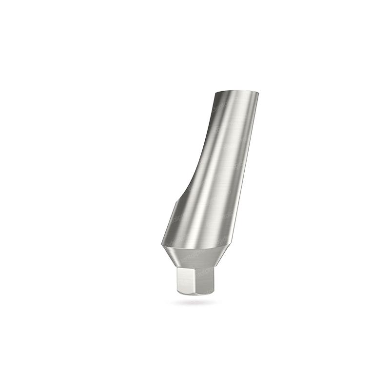 15° Angled Titanium Abutment for Dental Implant - Internal Hex (NP)