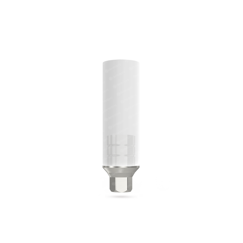 Titanium Base 0.5mm Hexagonal UCLA Abutment - Internal Hex (NP)